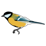 Great Tit bird drawing