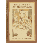 Halloween at Merryvale  book cover vector image