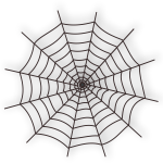 Vector illustration of spider web
