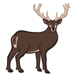 Colored deer