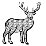 Deer from coloring book