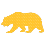 Honeycomb Bear With Stroke