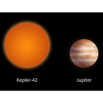 Kepler 42 and Jupiter
