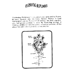 Klamath Weed Coloring Guide