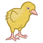 Colored chick