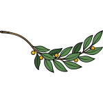 Laurel branch vector image