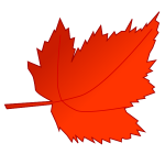 Red and orange maple leaf vector image