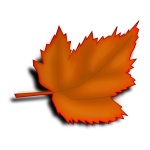 Orange fall leaf vector image