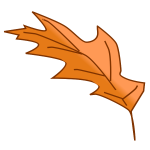 Oak tree autumn leaf vector image