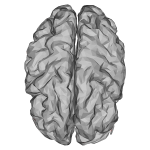 Low Poly 3D Brain
