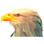 Low Poly Bald Eagle