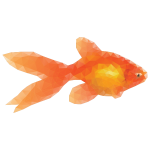 Low Poly Goldfish