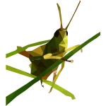 Low Poly Grasshopper