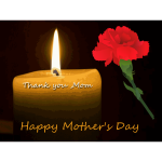 Mother's Day carnation and candle