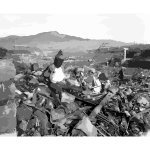 Nagasaki temple destroyed 2016122135