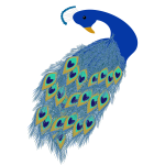Graphics of blue peacock tail and head
