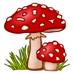 Colored toadstool