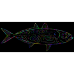 Prismatic Fish Line Art With Background