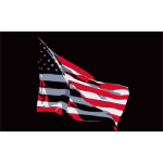 REQUEST United States Flag in Wind