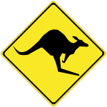 Kangaroo on road caution sign vector image