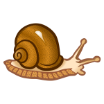Colored snail