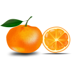 Orange and a slice