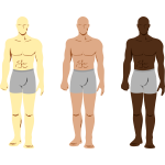 Vector drawing of three masculine men characters