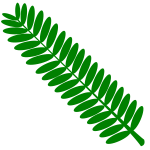 TJ Openclipart 27 mimosa leaf 9 3 16 final