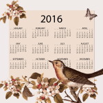 Calendar 2016 with vintage birds and flowers