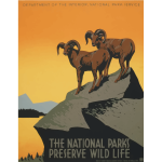 National parks tourism poster