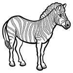 Zebra in black and white vector drawing