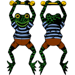 Vector image of acrobat frog