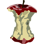Apple core vector illustration