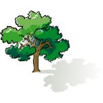 Vector clip art of colored oak tree
