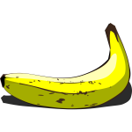 Whole banana in pairing vector image