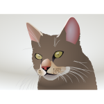Vector image of a cat