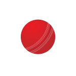 Cricket ball vector image