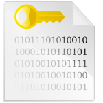 Encrypted file icon vector image