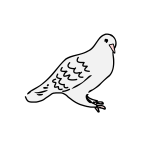 Dove sitting vector graphics