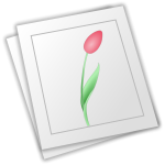 Vector image of flower drawn on white paper