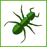 Green spider vector drawing