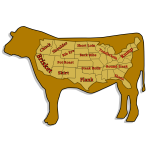 Funny vector illustration of beef cuts