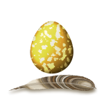feather and egg