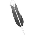 Drawing of grey feather