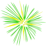 Green fireworks vector image