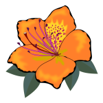 Orange flower with leaves