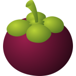 food mangosteen