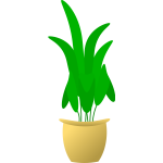 Illustration of large leafed plant in pot