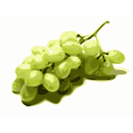 Image of stylized green grapes
