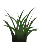 Bunch of grass vector illustration